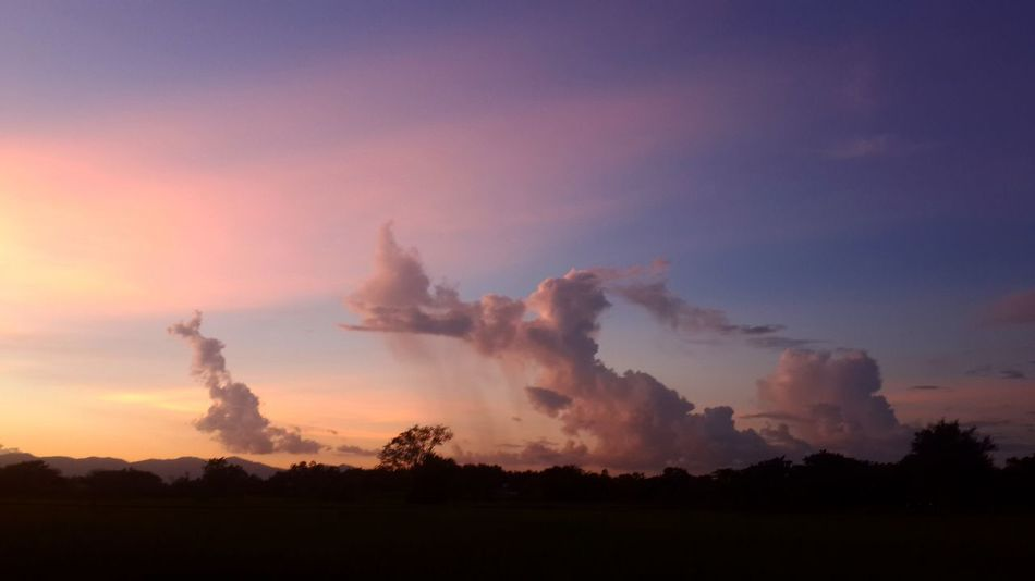Sunset Tree No People Landscape Outdoors Nature Beauty In Nature Sky Day Lampang Thailand Beutiful Day Cloud - Sky Beautiful World 🌍 Afterthestorm  Afterthestorm  Rainy Days Seeker