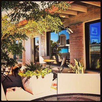 The beautiful patio of Wy Knot. Cafés Centralphx Phoenixaz