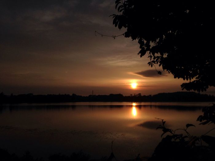 IPhone No Edit/no Filter Water Sunset Beauty In Nature Reflection Tree Nature Lake Plant Sun No People