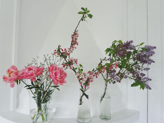 Flower vases on manttelpiece at home