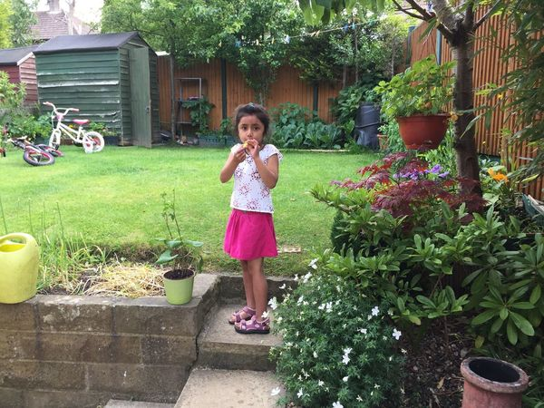 Garden Amelia Miah