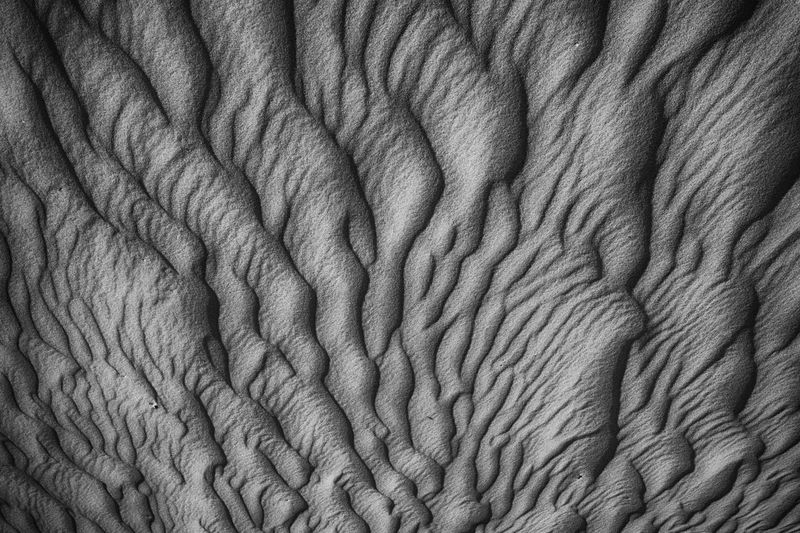 Black And White Blackandwhite Dunnes Textured  Backgrounds Wrinkled Pattern Abstract Full Frame No People Nature Beauty In Nature Close-up Day Outdoors first eyeem photo