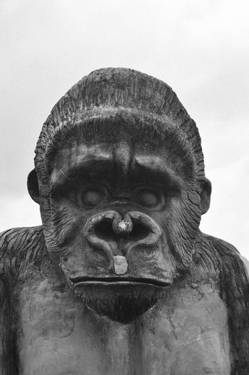 Close-up of an animal statue