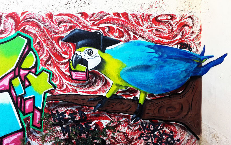Graphite Graphity ArtWork Art Draw Blue Red Pink Bird Photography ArtWork Color Colorful City Life