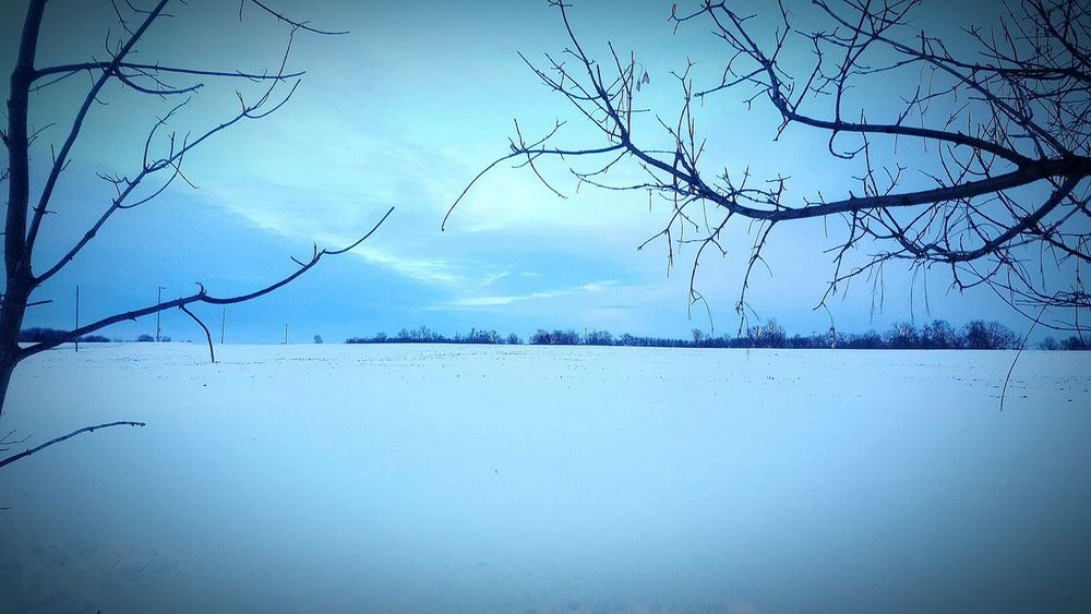 Simplicity.  Showcase: February Snow Minimal Popular Photos Farm Land Country Life Home Tranquility. Winterscapes Snowminimals
