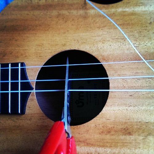 ????Ukulele Ukuleles Ukulelehale Guitar
