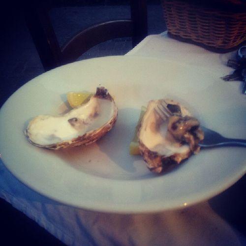 Oyster  Ostriche