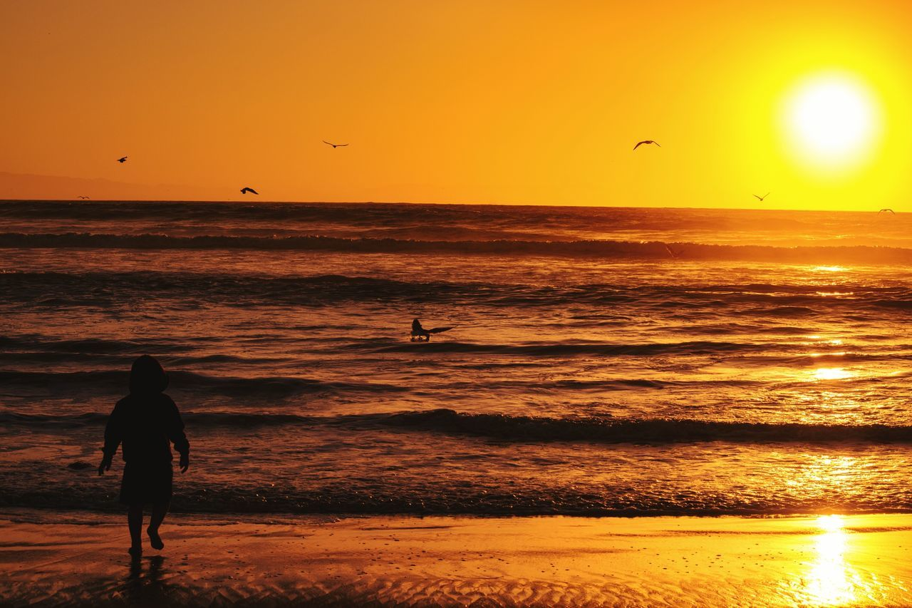 sunset, real people, sea, silhouette, nature, sun, beauty in nature, orange color, leisure activity, beach, lifestyles, scenics, water, men, sunlight, sky, one person, vacations, horizon over water, sand, tranquil scene, outdoors, standing, weekend activities, flying, wave, travel destinations, full length, extreme sports, bird, people