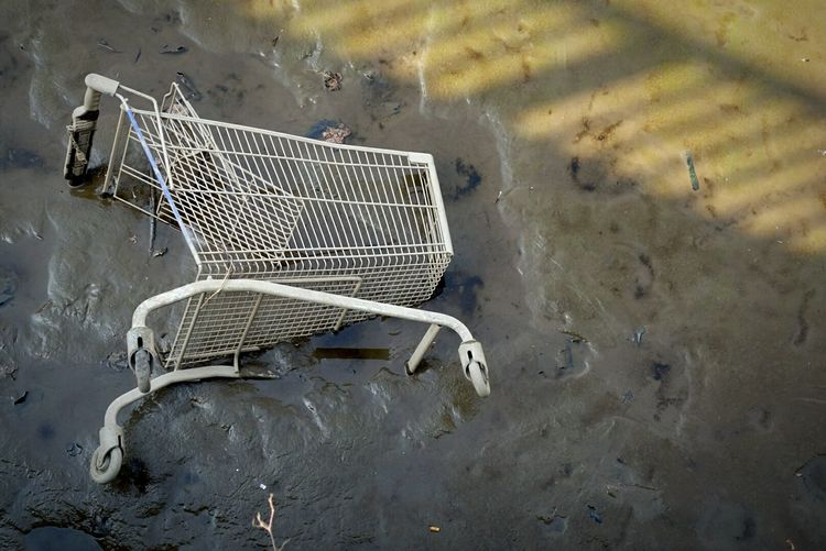 Shopping Trolley In Water