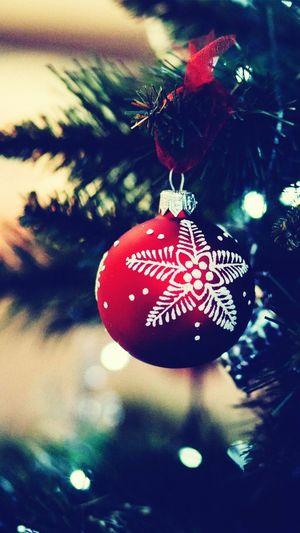 Heart Shape Christmas Celebration Christmas Decoration Christmas Tree Christmas Ornament Indoors