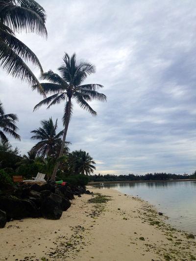 Rarotonga flora, beaches and lush jungle fun Beach Island Julyphotochallenge Jungle Nature Nature Photography Raro Rarotonga