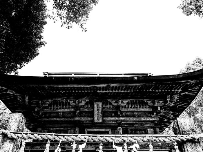 櫻井神社楼門 Built Structure Building Exterior Architecture Clear Sky Roof Day No People Outdoors History Sky Tree Shrine Japaneseshrine Japaneseculture Historical Architecture Itoshima