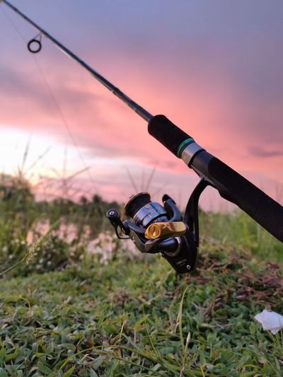 Close-up of fishing rod on field