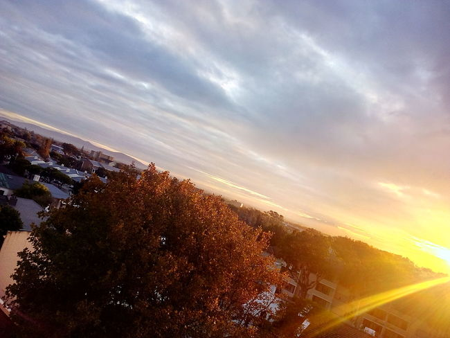 Sunrise - Dawn Early Sunset Sunset Tree Sunlight Aerial View Sky Landscape Cloud - Sky