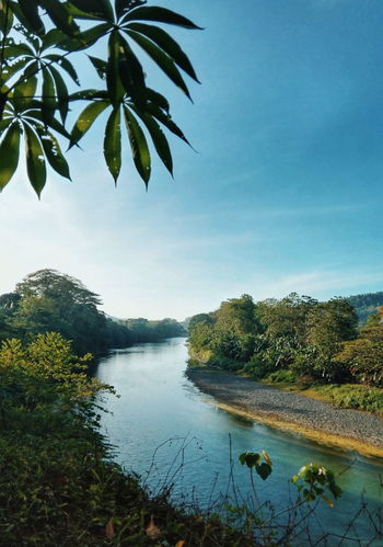 Rio de la vida Davao Davao City, Philippines Philippines River Riverside River View Riverbank Riverside Photography