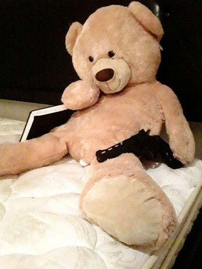 Bear Arms 2