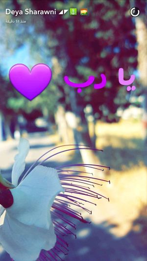 Deya ( Snapchat Hebron Love This  ستاد_دورا Taking Photos EyeEm Hello World Enjoying Life Palestine Flowers Have A Nice Day! Lovely Deya.dudu👻 Snapchat™ كل_عام_وانتوا_بخير_جميعا ضيفوني سناب ❤ يا رب رمضان_كريم )