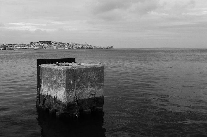 Walking Around Enjoying The Sun Lisboa Black&white Notes From The Underground Escaping