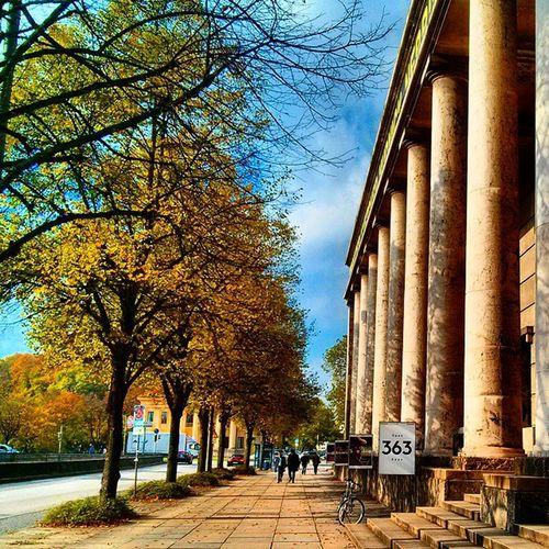 Columns - Wood and Concrete Architecture Cityscape Streetphotography 363 hausderkunst artspaces history historicbuilding