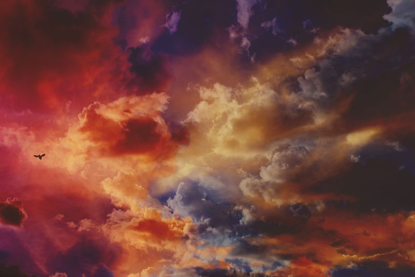 Double Exposure Colors Edit EyeEm Best Shots Cloud - Sky Sky Sunset Beauty In Nature Nature Low Angle View Scenics Dramatic Sky Backgrounds Silhouette Majestic Tranquil Scene