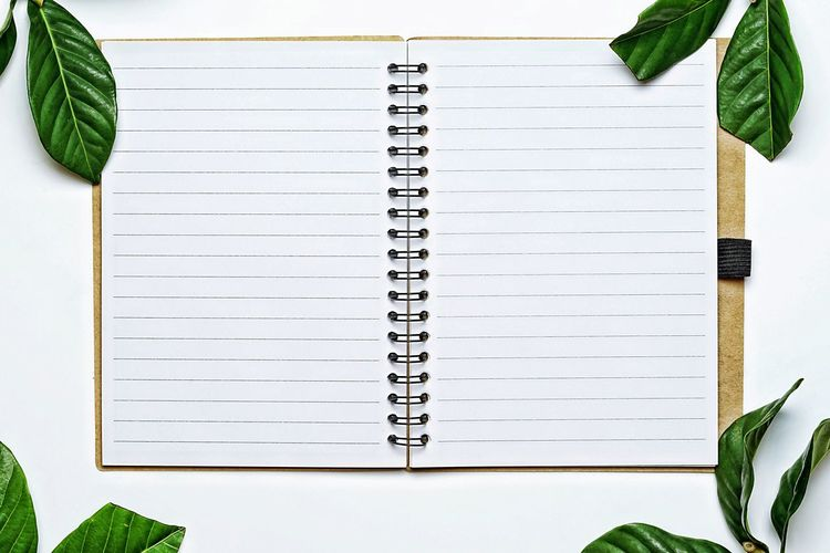 Directly above open spiral notebook by leaves against white background