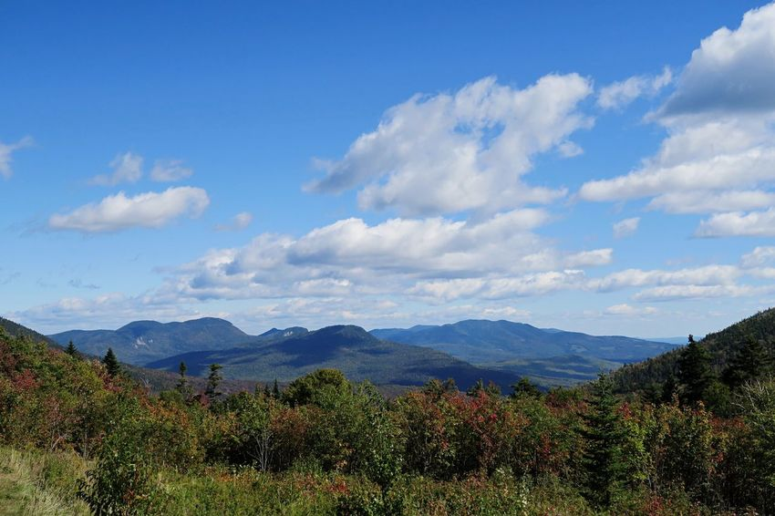 White Mountains Unfiltered Blue Sky And Clouds Blue Sky USA EyeEmNewHere EyeEm Nature Lover EyeEm Best Shots New Hampshire White Mountains Beauty In Nature Scenics Mountain Nature Tranquility Cloud - Sky Sky Growth Mountain Range Tranquil Scene Day Landscape No People Tree Outdoors Blue Plant