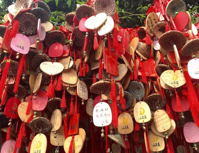 Chinese Wishing Tree at Phoenix Mountain in Baoan - Shenzhen, China Wishing Tree Traditional Culture China Chinese Wishes Wish Tree Shenzhen Buddhism Buddhist Temple Mountain Tree BaoAn Temple Hanging Phoenix Mountain Traditional Chinese Chinese Culture Traditionally Chinese Chinese Style