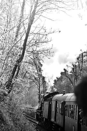 local train at a show Background Bare Tree Black Blackandwhite Cold Cold Temperature Fundrive Locomotive Low Angle View Nature Outdoors People Show Silhouette Smoke Steam Trains Track Train Tree Vertical Waggon Wallpaper Weather White Winter Welcome To Black