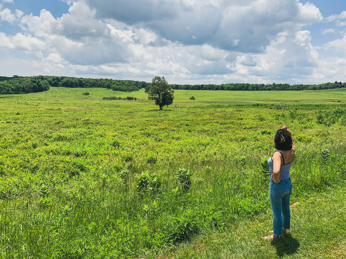 Rear view of a woman standing at edge of a field
