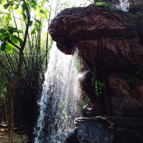 Traveling Summer Summertime Park Waterfall Relaxing Taking Photos Happiness Cafe Americano Fun
