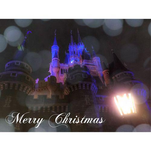 🎄Merry Christmas🎄 MerryChristmas 日本 東京 ディズニーランド TDL Amazing めりくり Japan Tokyo 東京ディズニーリゾート Tokyodisneyresort Disneyland Tokyodisneyland