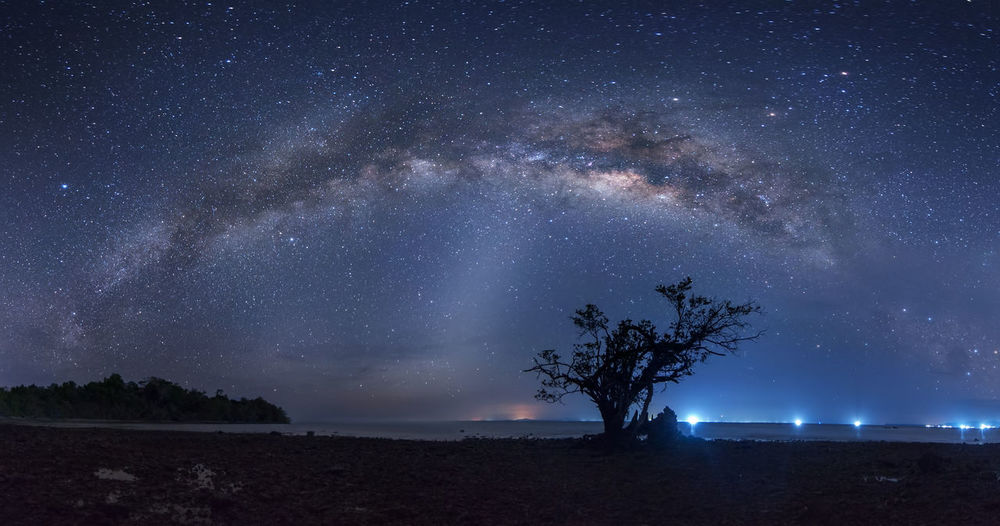 Panorama Milky Way Night Star - Space Space Sky Astronomy Galaxy Scenics - Nature Tree Beauty In Nature Milky Way Nature Plant Tranquil Scene No People Tranquility Land Star Outdoors Idyllic Star Field
