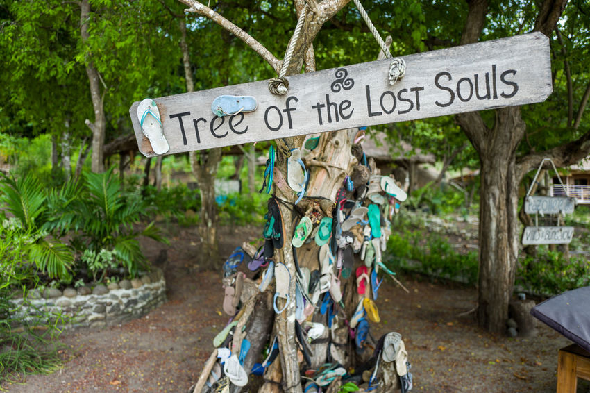 Labuan Bajo ASIA Sandals Tree Lostsouls Shoes