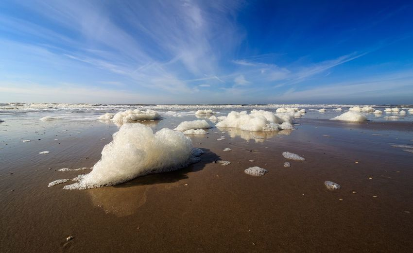 Foam at the beach Sky Sea Beach Water Land Beauty In Nature Cloud - Sky Nature Scenics - Nature Horizon Over Water Horizon Tranquility Day Tranquil Scene Sand Blue Motion No People Aquatic Sport