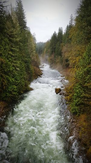 River Aerial Multnomah County Bull Run Cloudy Early Morning Rocks Trees Sandy Fog Flying High