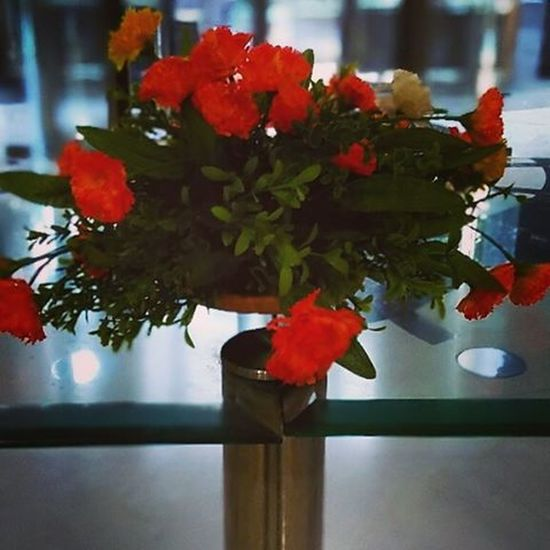 Flowers I love them... Redmi2Prime Xiaomi Xiaomiyicamera Travel Flowers Hyderabad Themanohar HotelLobby
