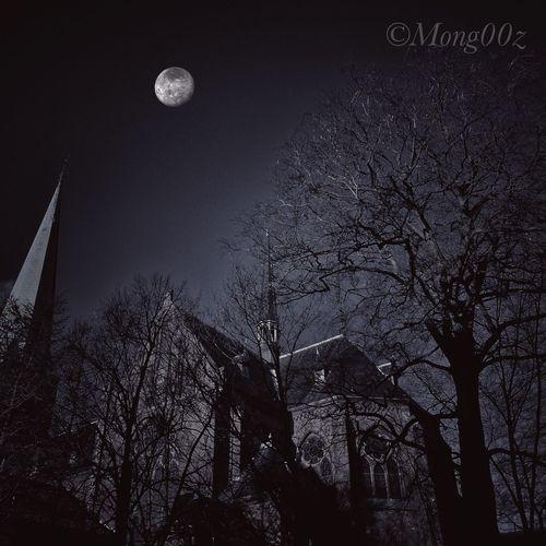 Church Rijswijk Holland Moon Bare Tree Dark Edit Trees