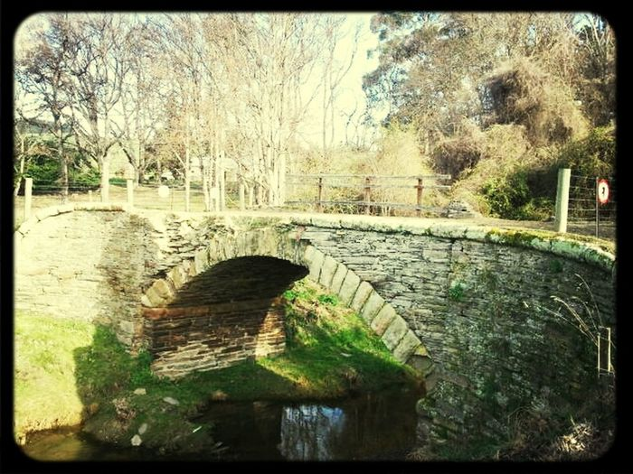 Historic bridge in Palmerston Otago