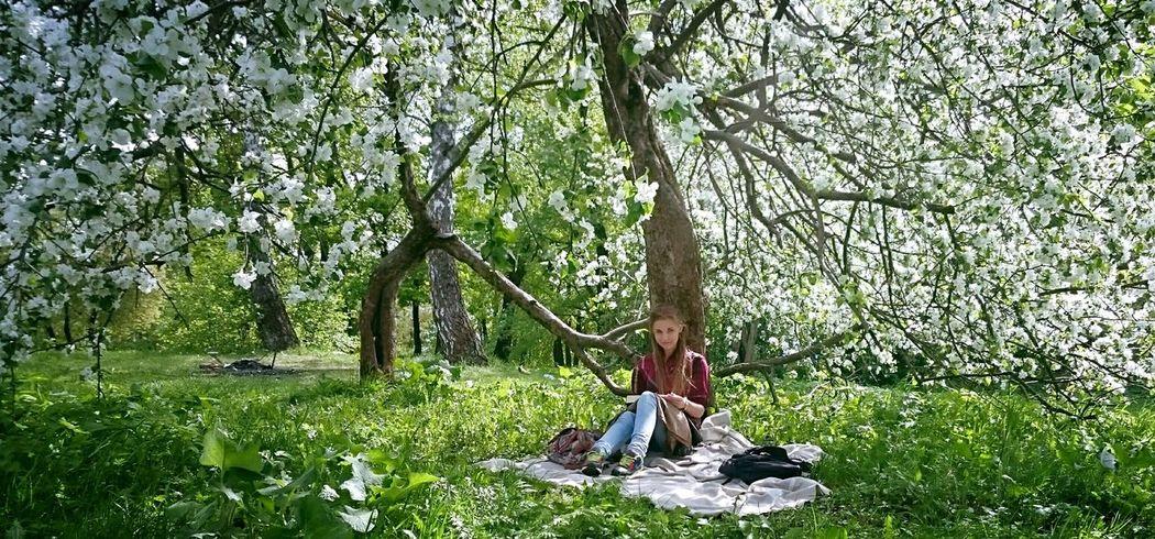 Love My Dream My Love Flower Book Books ♥ Sun Fly Me  Dreams Tree Love Dream Smile
