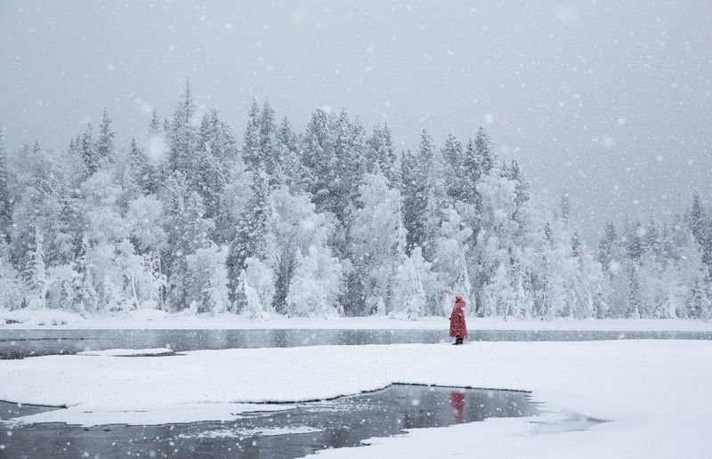 Snow Tree Cold Temperature Winter Plant Beauty In Nature Nature One Person Scenics - Nature Day Real People Covering Lifestyles Land Snowing White Color Non-urban Scene Leisure Activity Standing Warm Clothing Outdoors Extreme Weather Red Red Clothes XinJiang Nature Fir Tree Winter Reflection