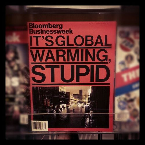 Yup! Bloomberg BusinessWeek Magazine Globalwarming Stupid