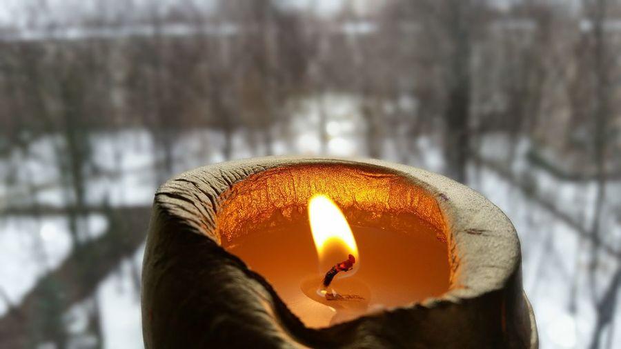 The Light Light