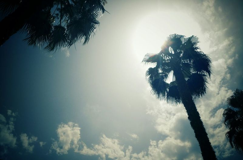 Summer Summer, Happiness, Memories Verano2015 ,sol,sun First Eyeem Photo