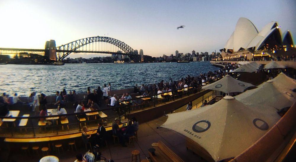 The Week On EyeEm The Great Outdoors - 2017 EyeEm Awards Sydney, Australia