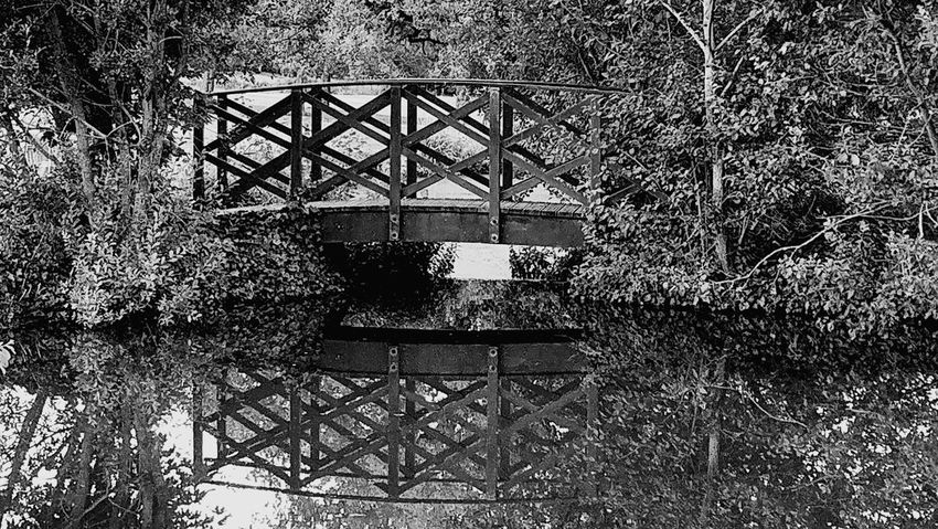 Architecture Built Structure Outdoors Black And White Blackandwhite Photography Bridge Nature Lake Water Water Reflections Grass Tree Day Sky The Week On EyeEm Black And White Friday