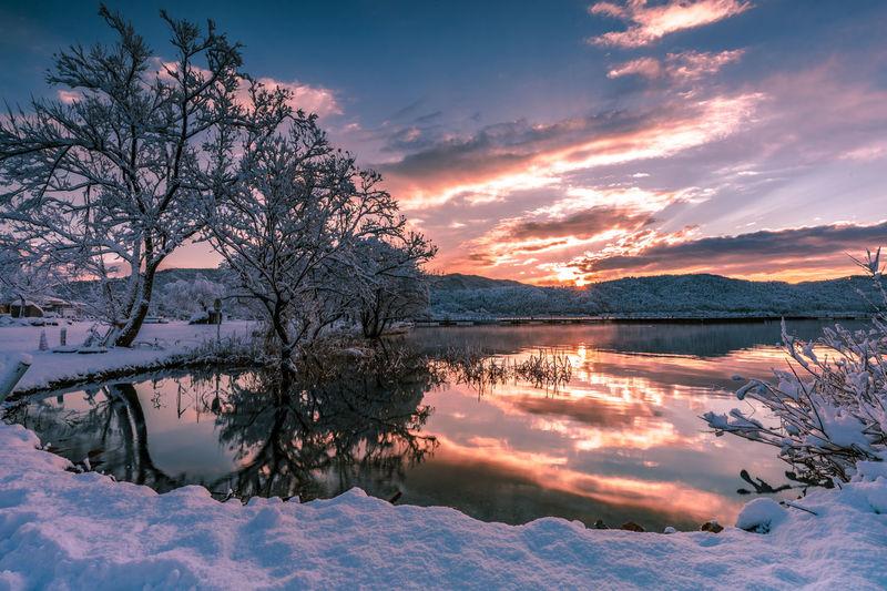 [Winter