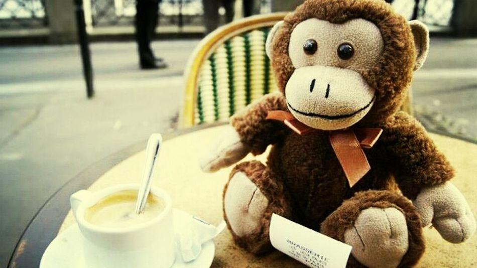 Monkey in Paris Paris 2014 Supermonkeyfly Supermonkeyflyphotos