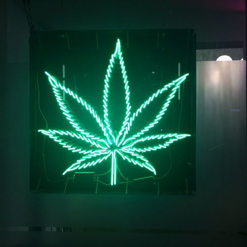 Vancouver Weed Marijuana Neon First Eyeem Photo