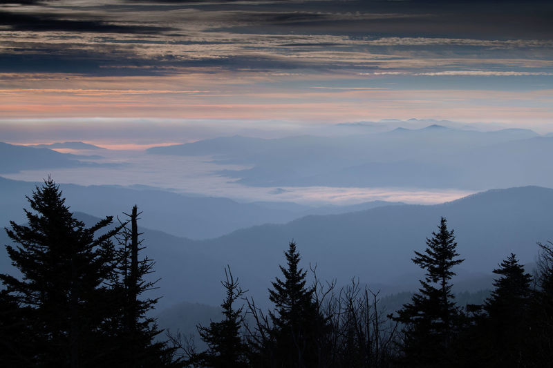 Scenics - Nature Beauty In Nature Mountain Sky Tranquil Scene Tranquility Cloud - Sky Tree Non-urban Scene Plant Sunset Nature Mountain Range No People Idyllic Environment Landscape Outdoors Silhouette Coniferous Tree