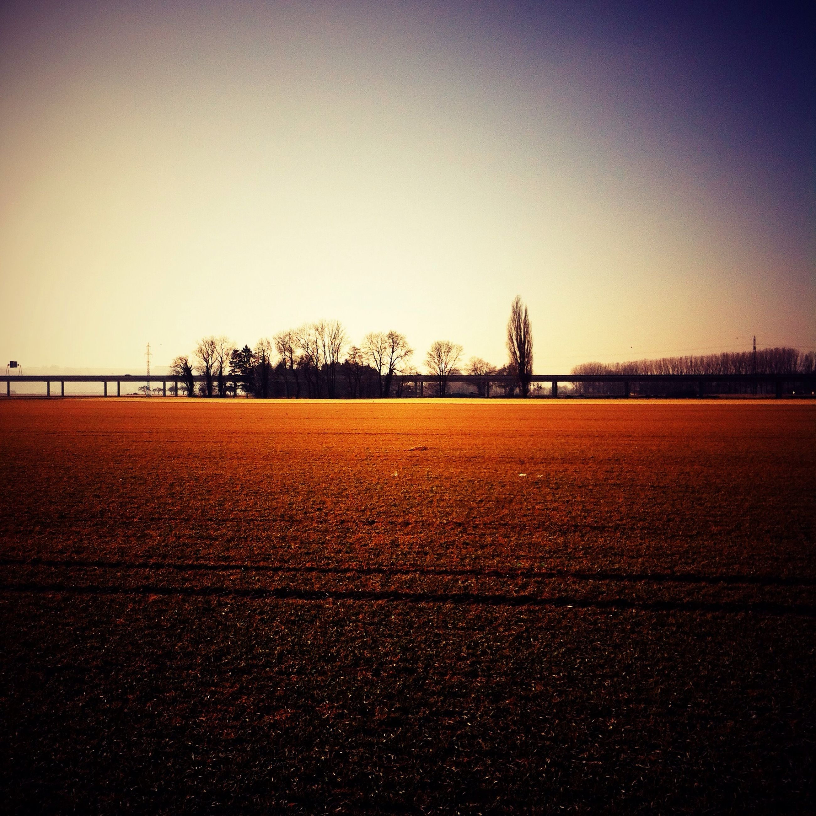 clear sky, copy space, landscape, tranquil scene, tranquility, field, tree, scenics, nature, beauty in nature, sunset, rural scene, outdoors, no people, agriculture, remote, horizon over land, non-urban scene, idyllic, road